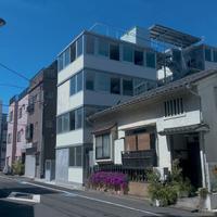 全住戸角部屋で三面採光を確保|篠崎弘之建築設計事務所
